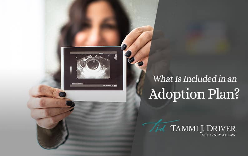 What Is Included in an Adoption Plan?